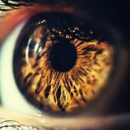 blindness-full.jpg